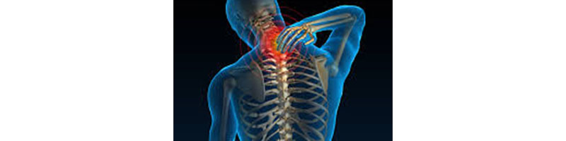 /back-health-blog-en/all-you-need-to-know-about-neck-pain